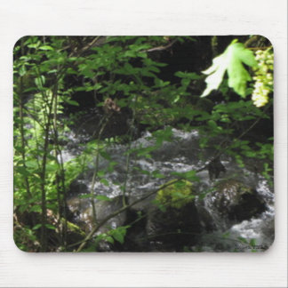 Spring Brook Mousepad Mouse Pad