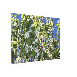 spring canvas prints