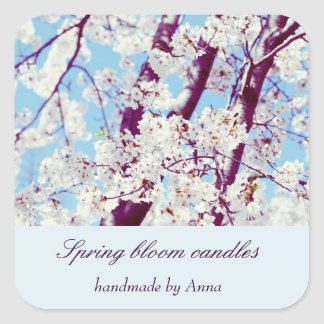 Spring cherry blooms against blue sky square stickers