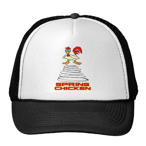 Spring Chicken Mesh Hat