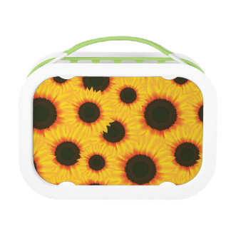 Spring colorful pattern sunflower lunch boxes