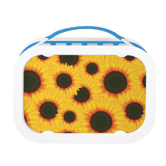 Spring colorful pattern sunflower lunchbox