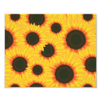 Spring colorful pattern sunflower photo print