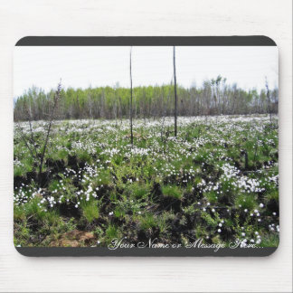 Spring Cotton grass on Grid 37394 Mouse Pad