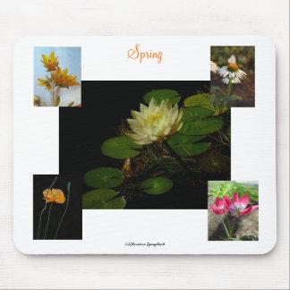 Spring Crocus Flowers Mousepad