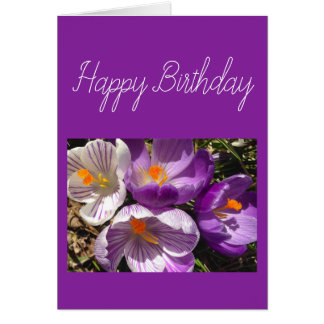 Spring Crocus Happy Birthday Card