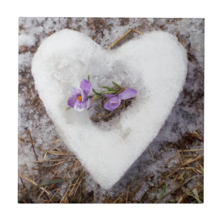 Spring crocus in snow heart photograph ceramic tile