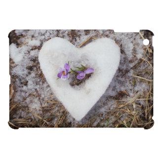 Spring crocus in snow heart photograph iPad mini cover