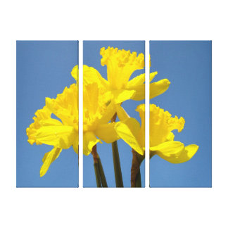 Spring Daffodils Floral Canvas prints Blue Sky