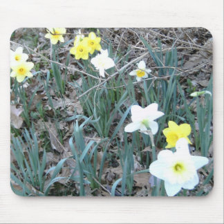 Spring Daffodils Mouse Mats