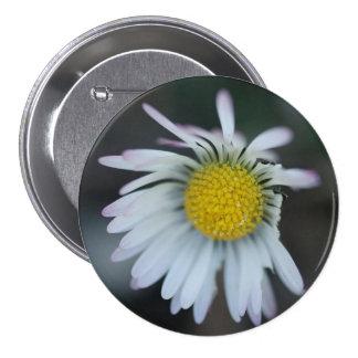 Spring daisy 7.5 cm round badge