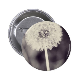 Spring Dandelion Pinback Buttons