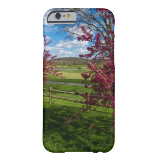 Spring Day In Rivercut Barely There iPhone 6 Case