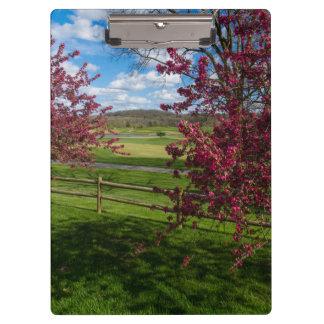 Spring Day In Rivercut Clipboard