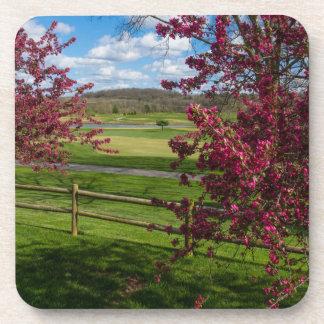 Spring Day In Rivercut Coaster