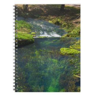 Spring Deep Notebook