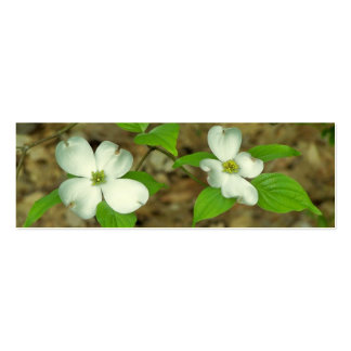 Spring Dogwood Business Cards