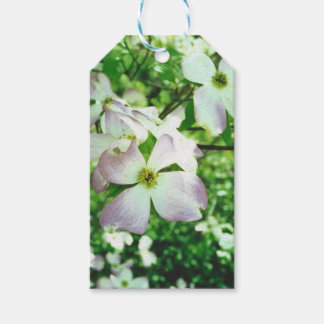 Spring Dogwood Gift Tags