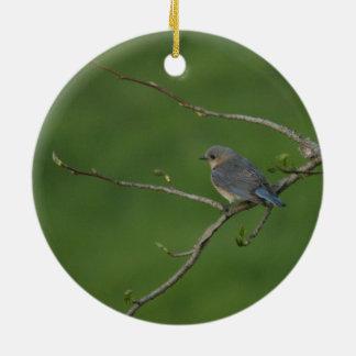 Spring/Easter: Male Bluebird, Female Bluebird Round Ceramic Decoration