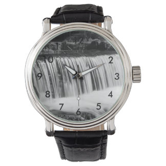 Spring Falls At Hodgson Grayscale Watch
