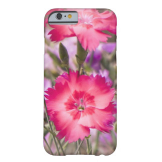 Spring Floral Barely There iPhone 6 Case