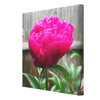 Spring flower gallery wrap canvas