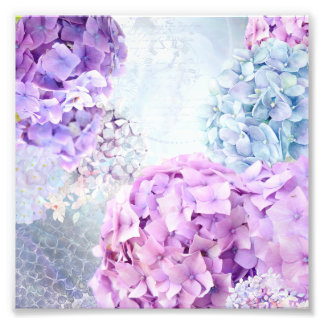 Spring Flower Hydrangea Pastel Collage Photograph