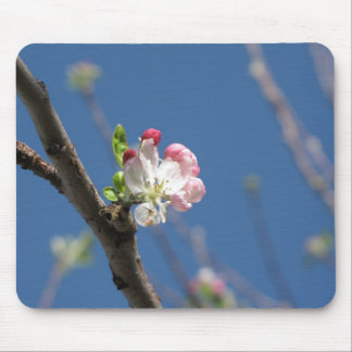 Spring Flower Mouse Pad