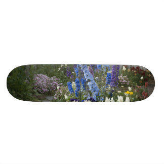 Spring flowers along a garden path, Georgia Skateboards