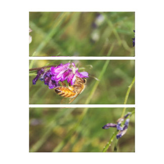 Spring flowers and a Bee Gallery Wrap Canvas