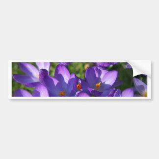Spring flowers and ladybug bumper sticker