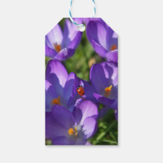 Spring flowers and ladybug gift tags