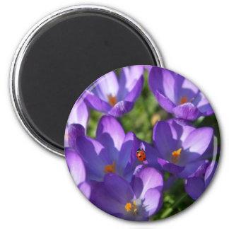 Spring flowers and ladybug magnet