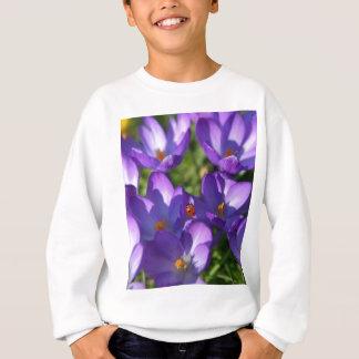 Spring flowers and ladybug sweatshirt