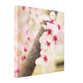 Spring Flowers Stretched Canvas Print