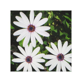 Spring Flowers Gallery Wrapped Canvas
