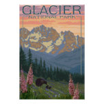 Spring Flowers - Glacier National Park, MT Poster