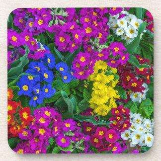 Spring flowers hard plastic coasters