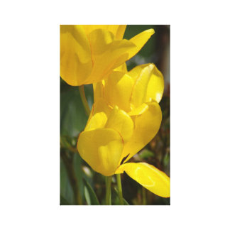 Spring Flowers in Yellow canvas print