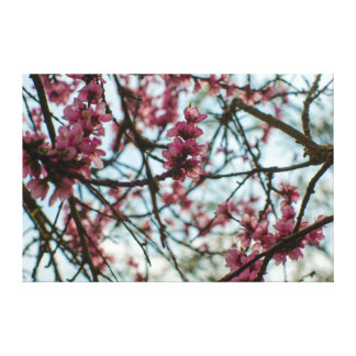 Spring flowers one has tree canvas print