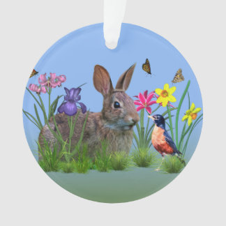 Spring Flowers, Robin,  and Bunny Rabbit