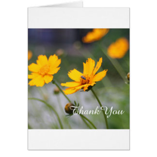 Spring Flowers, Thank You   Photo Card