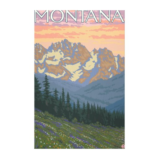 Spring FlowersMontanaVintage Travel Poster Stretched Canvas Print