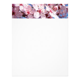 Spring Flyers paper Pink Tree Blossoms Blue Sky