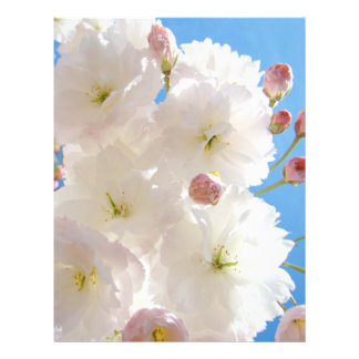 Spring Flyers Paper White Pink Fluffy Tree Blossom