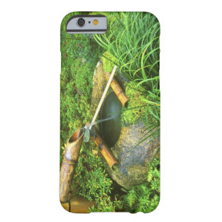 Spring for Tea Ceremony, Sanzen-in Temple, Barely There iPhone 6 Case