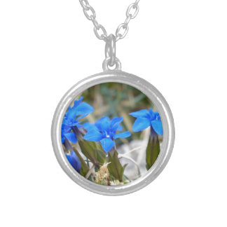 Spring Gentian Flowers Silver Plated Necklace