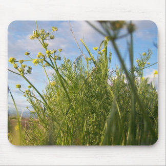 Spring  Grass Mouse Pad