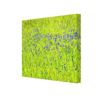 Spring Hillside Canvas Prints