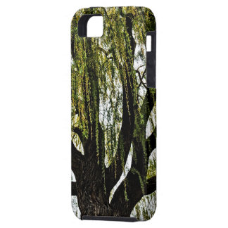 spring hopes muted iPhone 5 cases